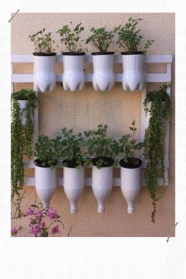 Décorer avec des plantes