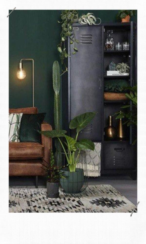 Plante verte dans un salon