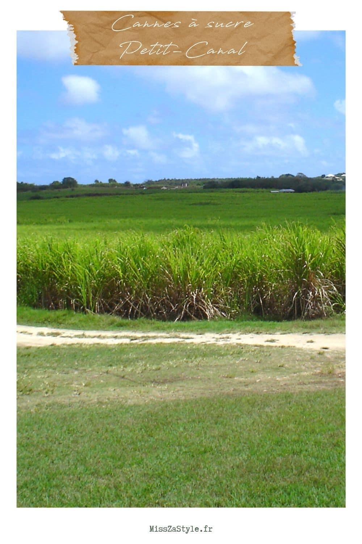 Visite déco : une villa de vacances au style ethnique en Guadeloupe